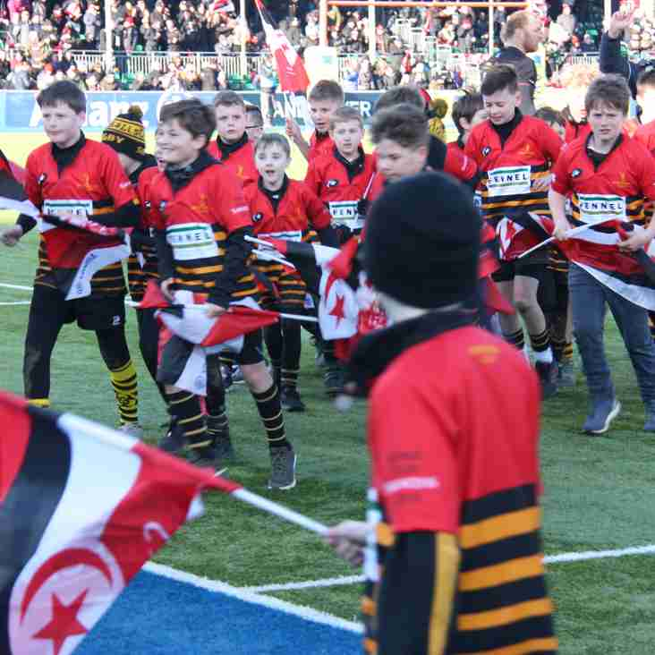 'Wold Minis take to the pitch at Allianz Park