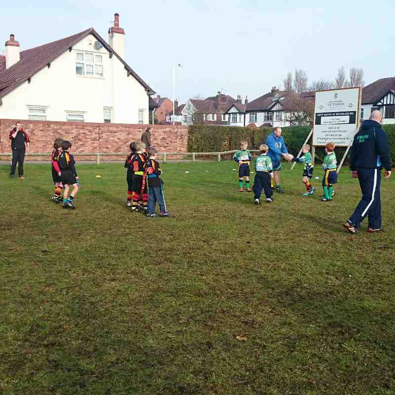 southport rfc under 8's v's Ormskirk 16/11/14