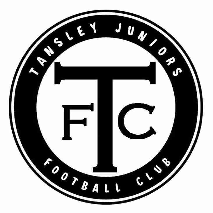 Tansley Juniors FC Mini-Soccer Tournament 2019