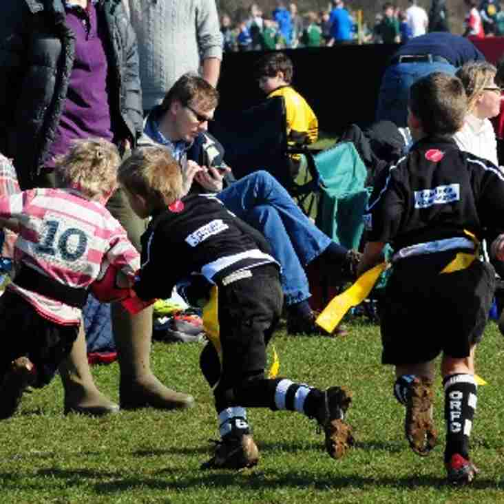 Chippenham Mini Rugby Welcomes New Players