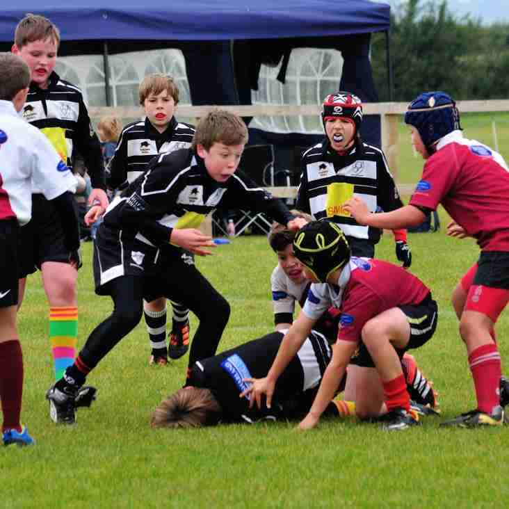 MiniChips welcome Cleve RFC