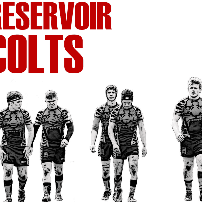 Resevoir Colts