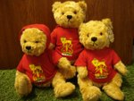 KING'S BEARS ARE HERE!