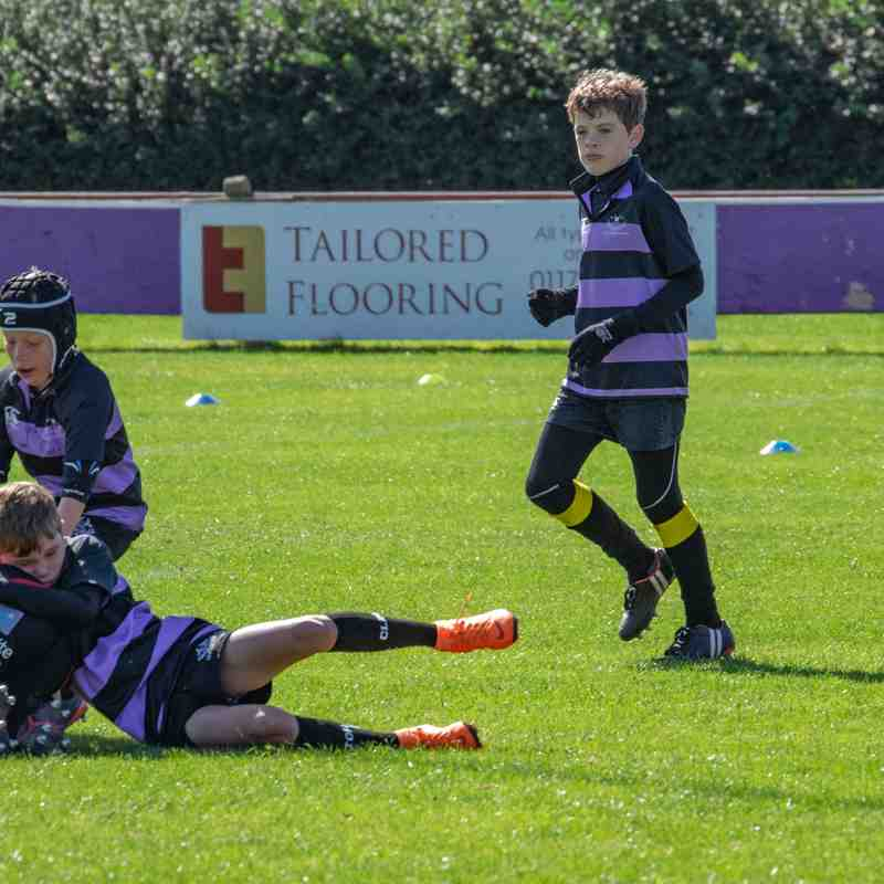 Clifton Rugby Minis Festival 18