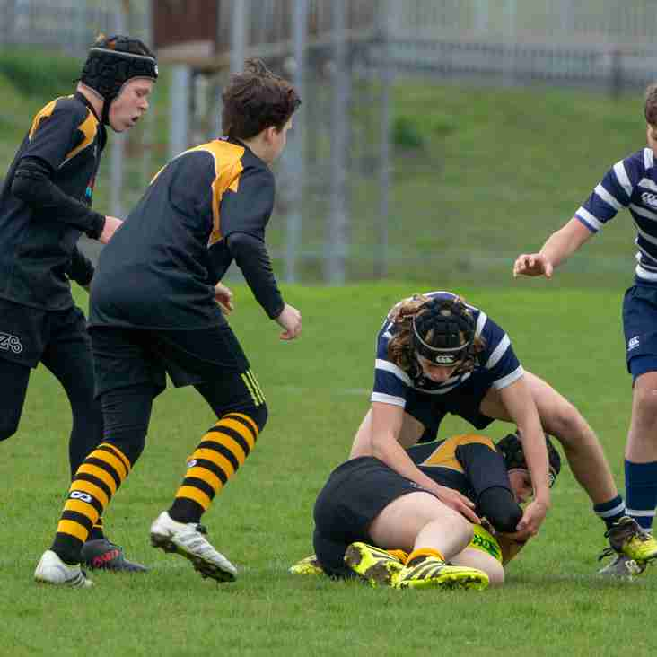 U14s HAWKS MAKE IT TO THE KENT SEVENS SEMIS