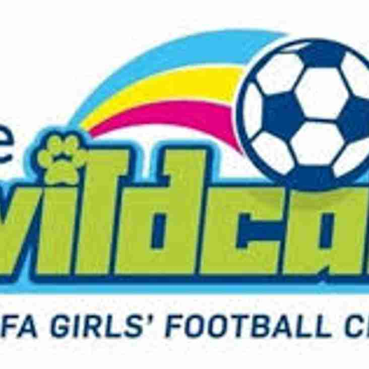Steelwomen host first ever Wildcats session