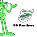 Panshanger U9 Panthers vs. Welwyn Pegasus U 9 Cyans