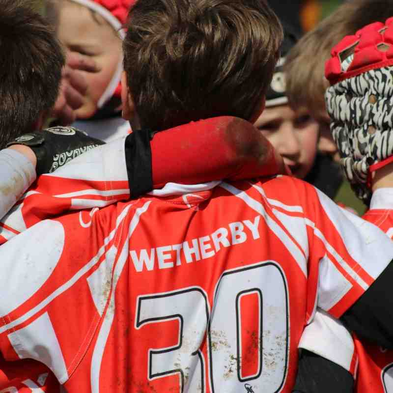 Wetherby U9s at the 2016 Harrogate Festival