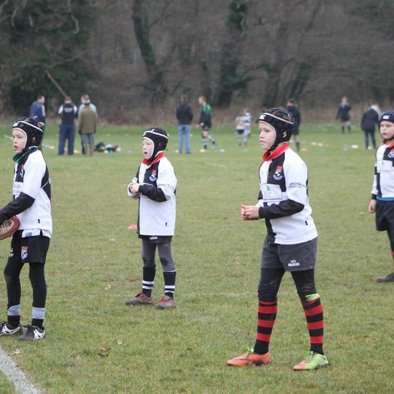 U10 Barbarian Team vs. Ledbury 1-2018