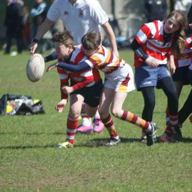 Under 12's 2015 Preston Festival