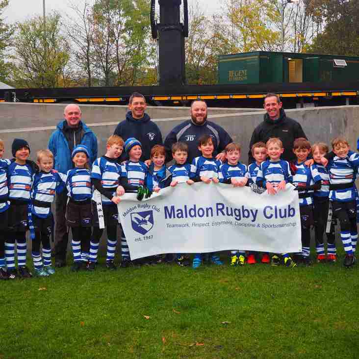 MRFC U8's Shine in the rain at Allianz Park