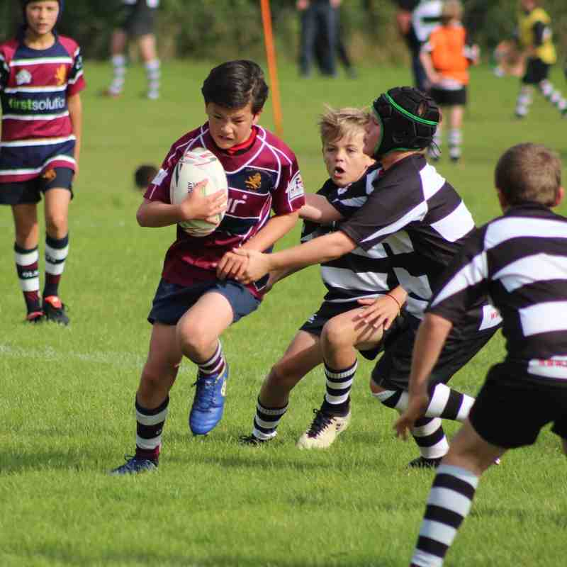 Old Pats U12 - C at Stow (County Festival)