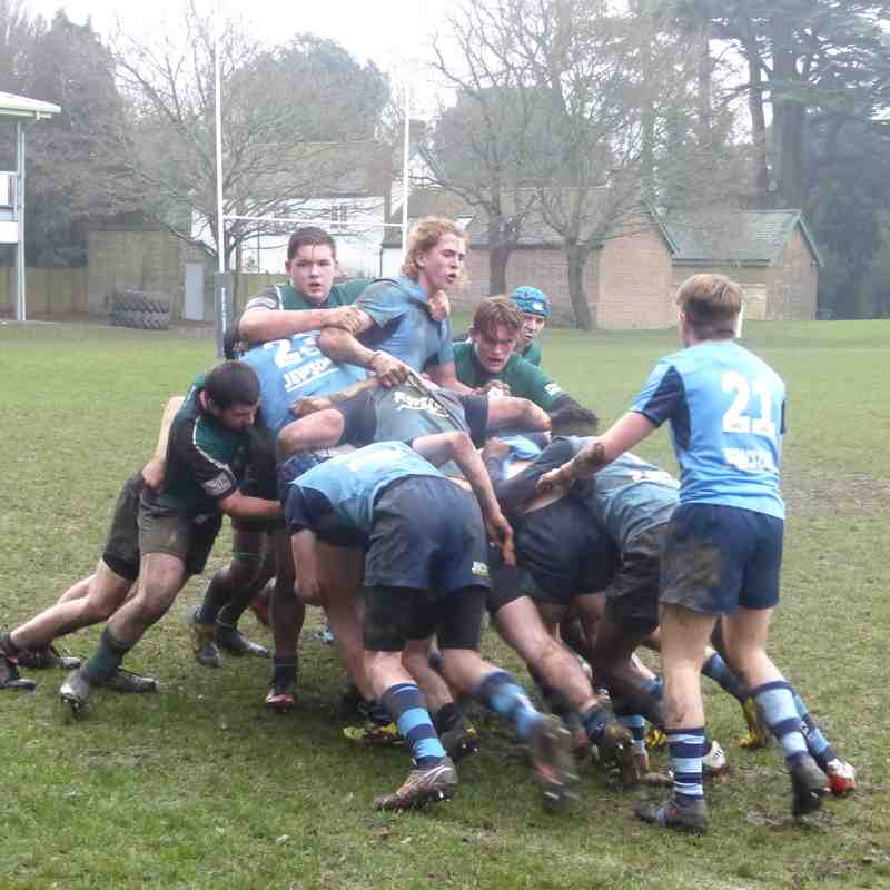 Colts v Chichester 08.01.17