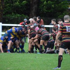 1st XV v Hampstead 01/12/18