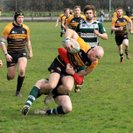 1XV half backs have the key to Chosen Hill's Defence