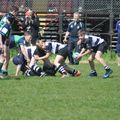 U14s Reach Cup Semi-Finals at Stirling Sevens