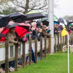 Colchester 1st XV vs Guernsey