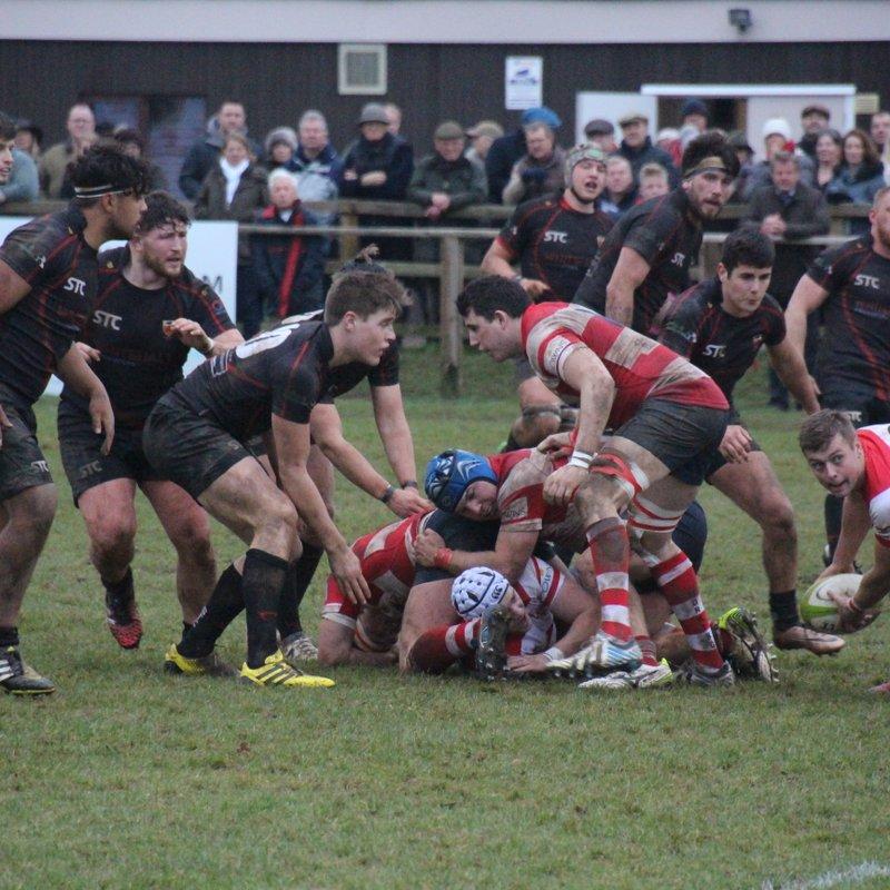 Colchester 1st XV vs Dorking