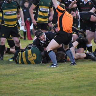 Colchester 1st XV 29 | 22 Old Priorians