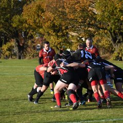 Colchester Cavaliers vs Halstead RFC