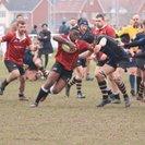 Colchester Ravens 19 | 33 Hertford IIs