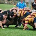 Westcliff 36 | 24 Colchester 1st XV Squad