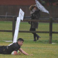 Colchester 1st XV vs Luton