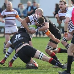 Colchester 1st XV vs Southend