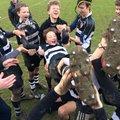 Suffolk 7s vs. Felixstowe Rugby