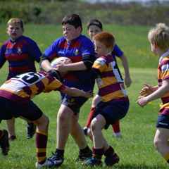 NB suffer defeat by excellent St. Brendans team