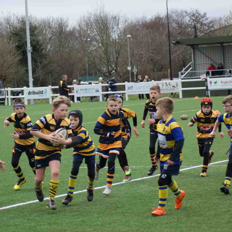 Hornets Rebels U9s  vs Barkers Butts 31/03/18
