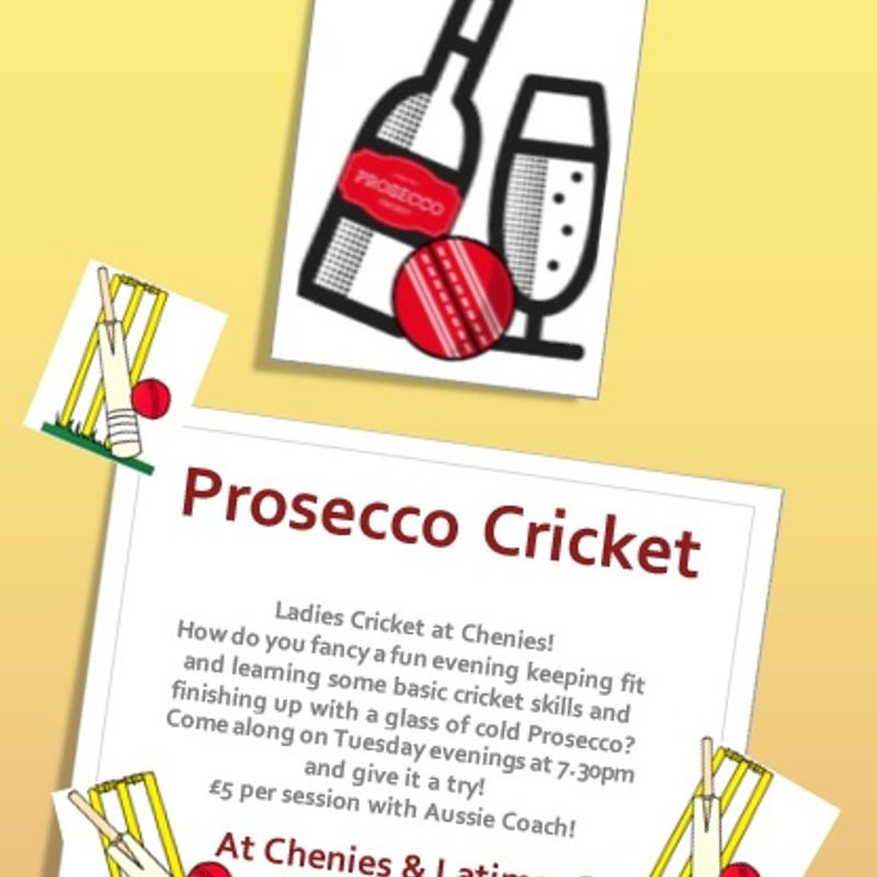 Calling all women - Prosecco Cricket is back