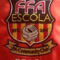 FFA U9 GOLDS beat Towcester Town Foxes 8 - 2