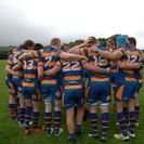 Hales fall to Lichfield in try fest