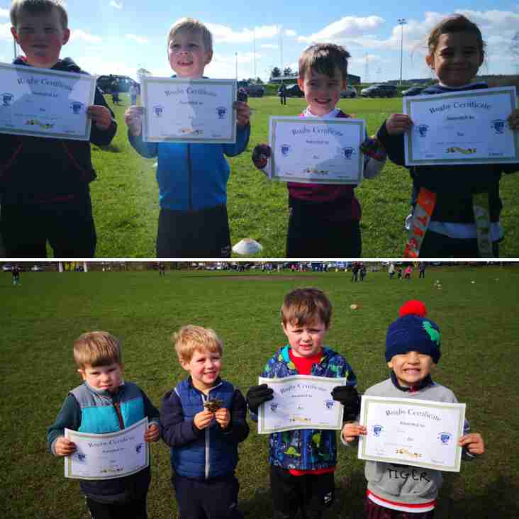Micros and U6s update from 24th and 31st March