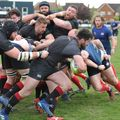 Colchester 1st XV 26 | 33 Brighton Blues