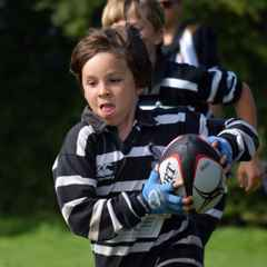 Half term rugby camp - BOOKING OPEN