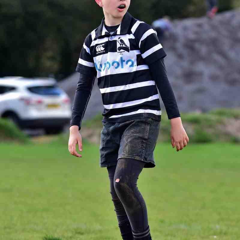 Tring RFC Mini Rugby Festival April 2016 (U10's)
