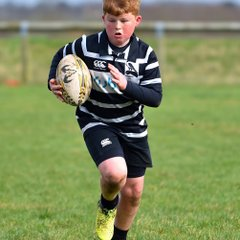 Chinnor RFC U11's Vs. Henley RFC 05/03/17
