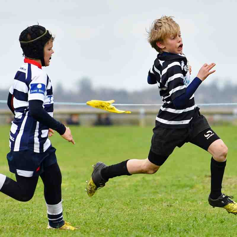 Oxfordshire Rugby Festival 19/03/17