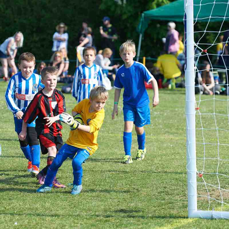 Stonesfield Tournament 2017