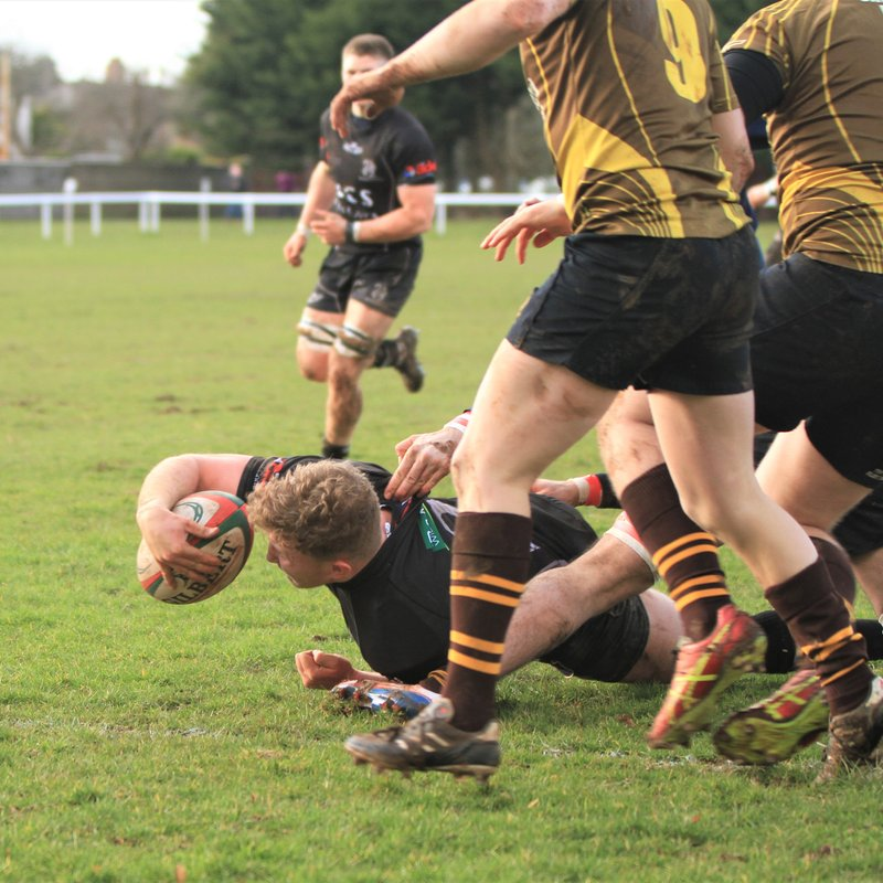 Squirrels field five sides to make history