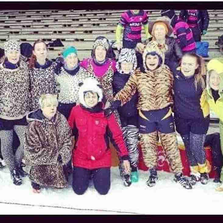 Naisten joukkueen helmikuu: turnaus, alkeiskurssi ja Snow Rugby!
