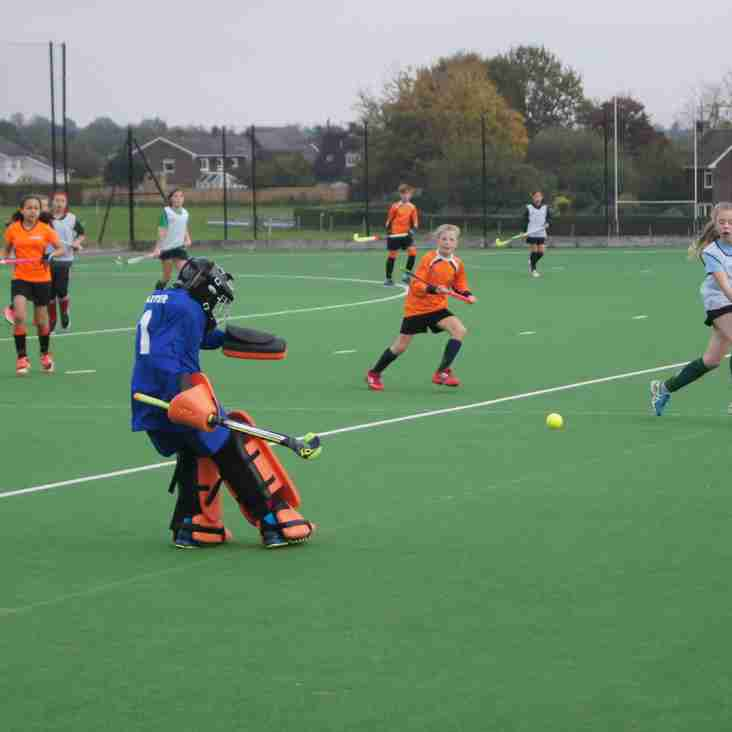 Juniors enjoy 2nd Wiltshire hockey festival