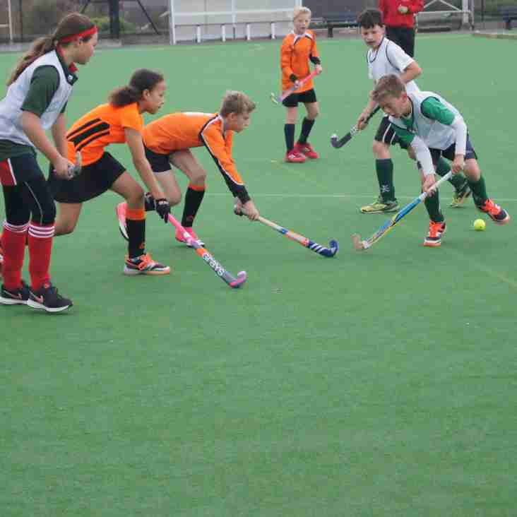 Junior Mixed Tournaments at Dauntseys