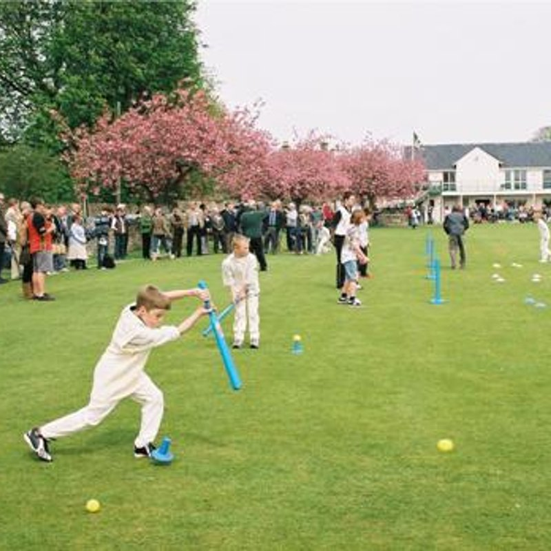 Is the future of the Cricket Academy in doubt?