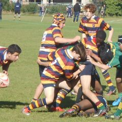 U14 v Old Bristolians 9 Sep 16