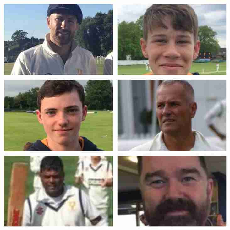 2nd XI stats sees Robin and Ian at the top