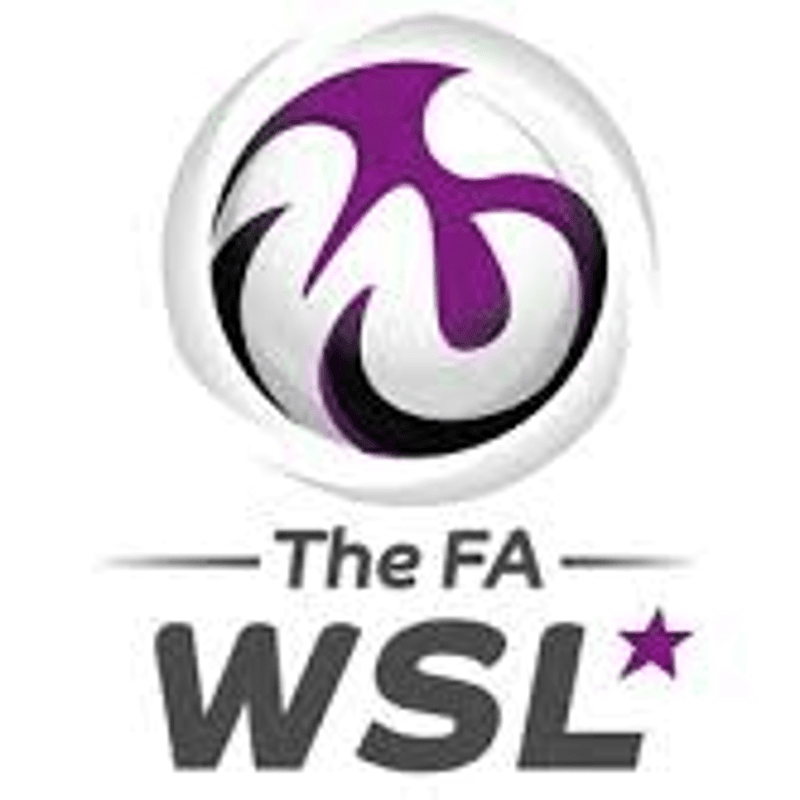 NEWS:- PALACE LOOK TOWARDS WSL APPLICATION