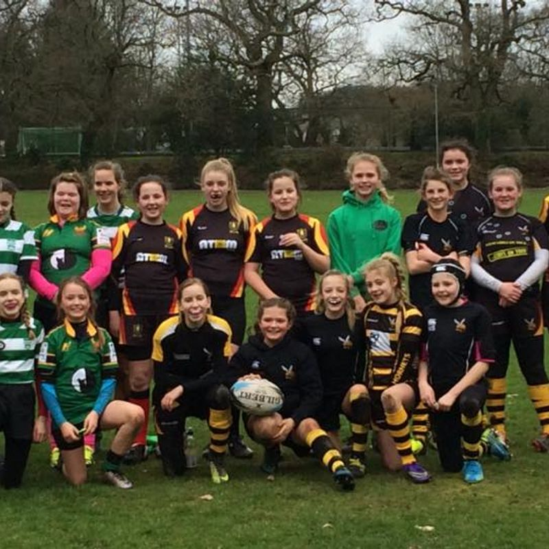 Ladies rugby showcased in chard